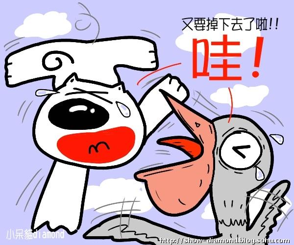 小呆猫生日快到罗~可爱漫画~生日呆(三)