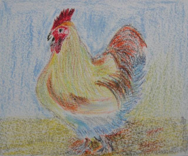 大公鸡—油画棒