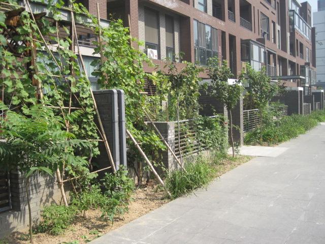 70平小花园设计实景图
