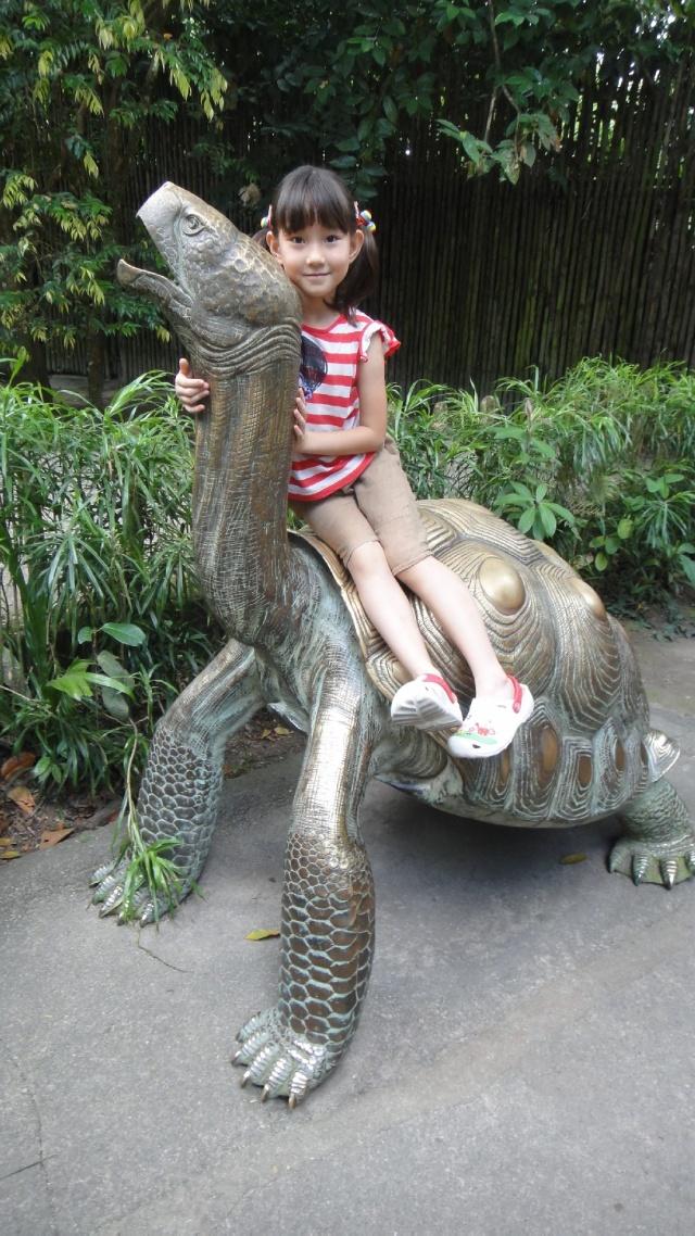 新加坡动物园日间&夜间