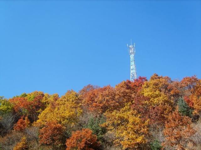 中国移动的信号塔