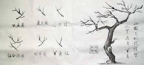 怎样画树3 树枝和树梢画法