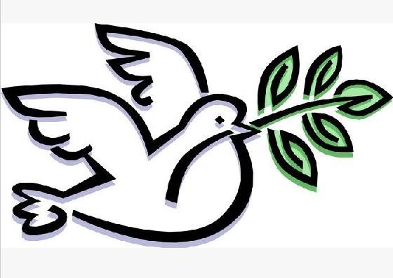 动物简笔画:鸽子简笔画