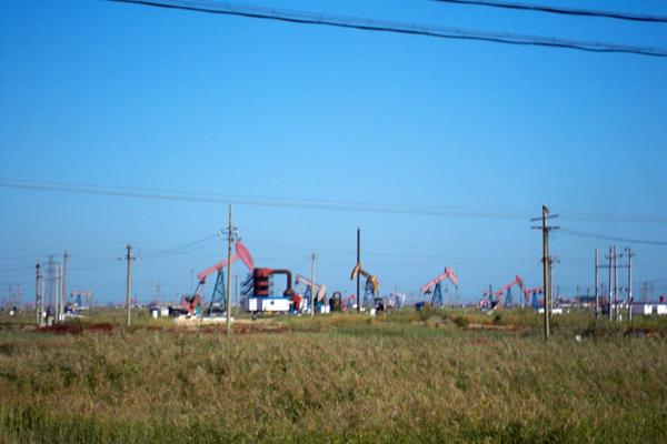 胜利油田开发后,在孤岛镇开发了两个油田:孤岛油田和孤东油田.
