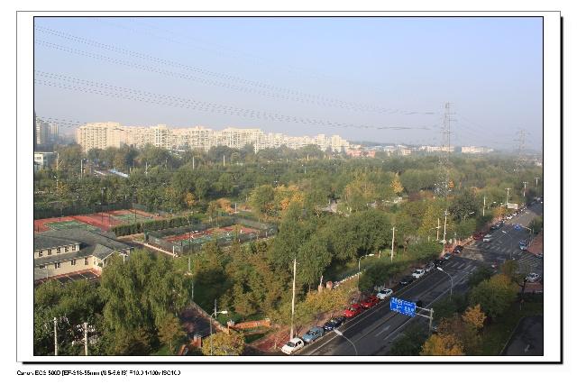 窗外的风景-清清乔木-搜狐博客