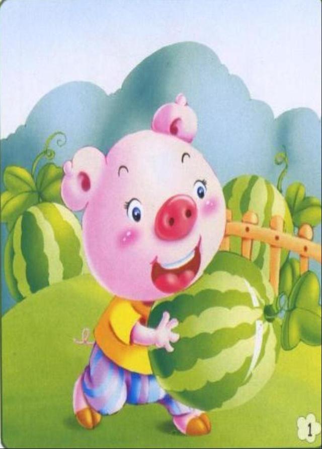 小猪学样看图作文素材