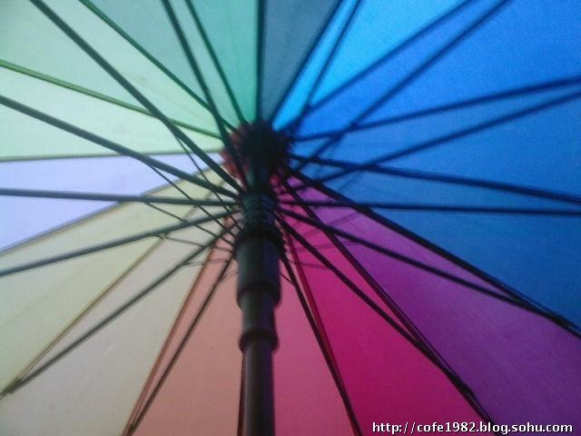 风吹小树会记录,雨天的彩虹伞也要记录