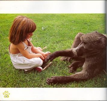 《我的野生动物朋友》——蒂皮