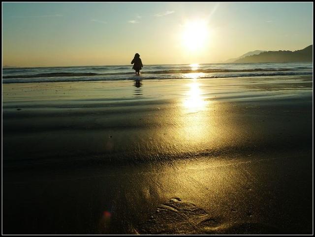 阳光下拥抱大海的背影图片