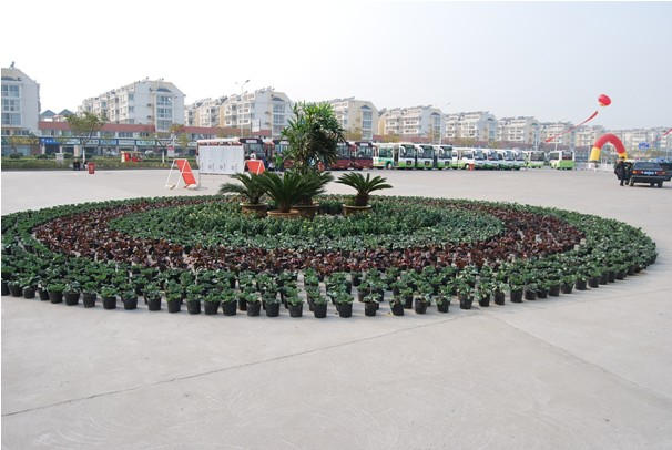 椭圆花坛平面素材